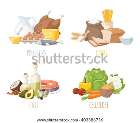 Healthy nutrition, proteins fats carbohydrates balanced diet, cooking, culinary and food concept vector. Healthy nutrition proteins fats carbohydrates vegetables fruits, meat and healthy nutrition. - stock vector