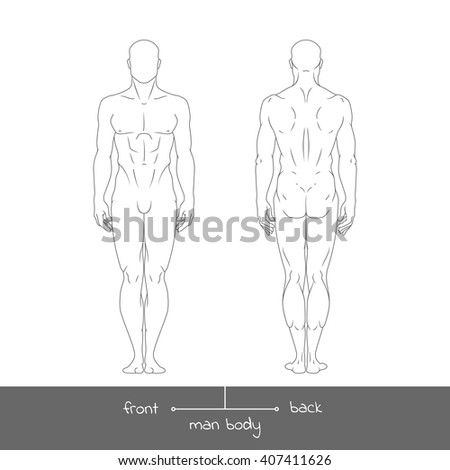 Healthy young man from front and back view. Male muscular body shapes outline vector illustration with the inscription: front and back. Vector illustration of a human figure in linear style - stock vector