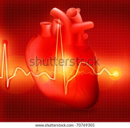 Heart cardiogram, eps10 - stock vector