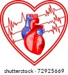 heart- ecg monitoring - stock photo