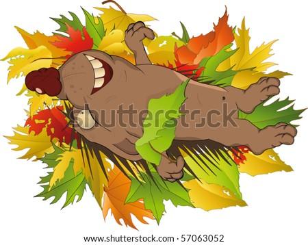 Hedgehog in wood - stock vector