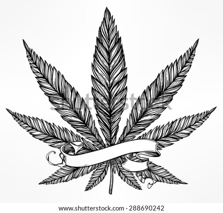 Hemp Cannabis Leaf in vintage linear style. Marijuana silhouette clip art. Concept design, Elegant tattoo artwork. Isolated vector illustration. Your text template. - stock vector
