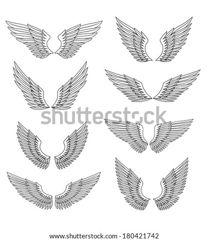 Heraldic wings and feather set for design, isolated on white - stock vector