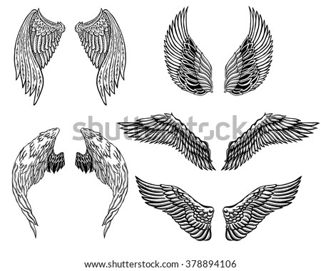 Heraldic wings set for tattoo or mascot design.  - stock vector