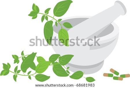 herbal medicine set - stock vector