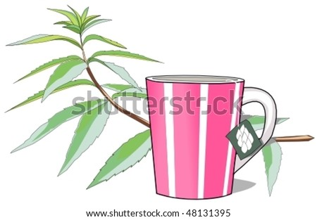 herbal tea - stock vector