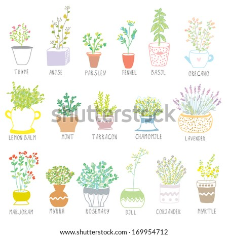 Herbs and spices set in pots with flowers illustration - stock vector