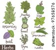 Herbs set - stock