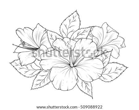 Hibiscus Lily Flowers Bouquet Garland Composition Stock-Vektorgrafik ...