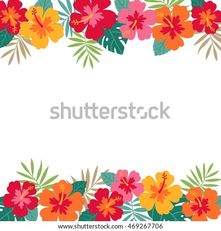 Tropical Border Stock Images Royalty Free Images