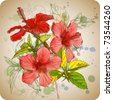 Hibiscus flowers & watercolor background - stock vector