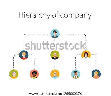 Hierarchy of company flat illustration isolated on white - stock vector