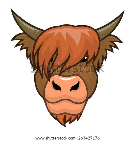 Highland cow head. - stock vector