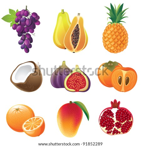 Highly detailed fruits icons set - stock vector