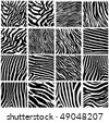 Highly detailed zebra vector pack - 16 different pattern - more in my portfolio - stock vector