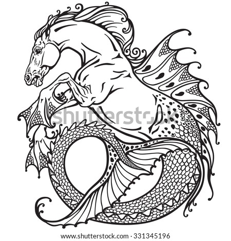 hippocampus or kelpie mythological sea-horse . Black and white image