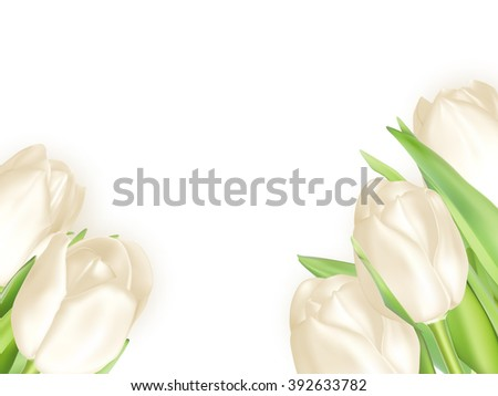 Holiday background with bouquet of white tulips. EPS 10 vector file included