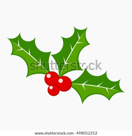 Holly berries vector illustration