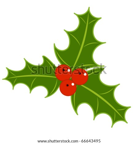 Holly berry symbol of Christmas. vector illustration - stock vector