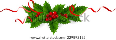 Holly with red ribbons - stock vector