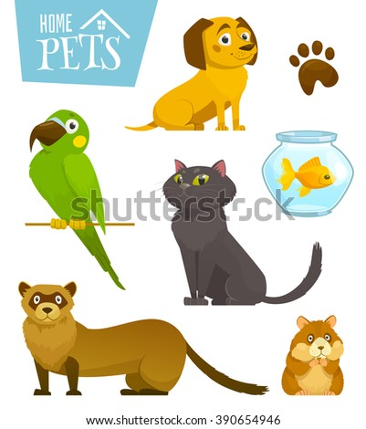 Home pets set isolated on white, cat dog parrot goldfish hamster ferret, cartoon vector illustration, domesticated animals - stock vector