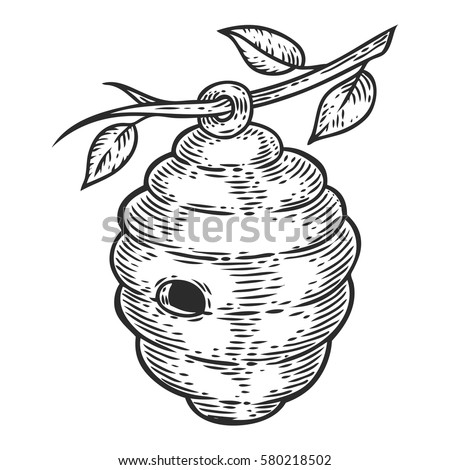 Honey Bee House Hive Engraved Organic Hand Drawn Sketch Illustration Packaging Food Label
