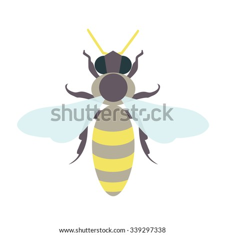 honey bee template insect icon design stock vector 339297338