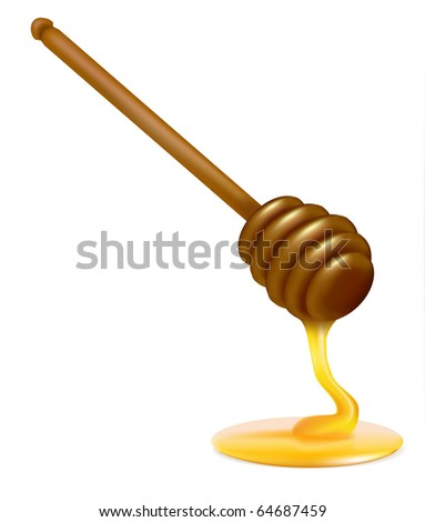 Honey dipper. Photo-realistic vector illustration - stock vector