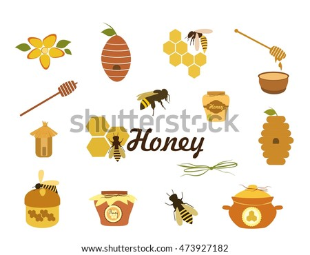 Honey icons set  vector. Set of bee, honey, beehive, wax cell, jars honey, honeycomb  vector illustration isolated on white background.