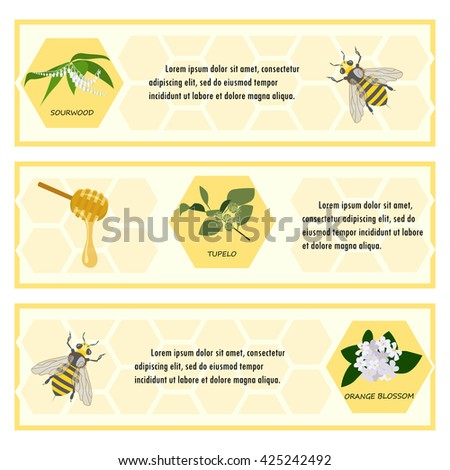 Honey lable set for banner, flyer, exhibitions, posters. Flowers, bees and honeycomb. Hand drawn design element isolated on white background. Place for text.