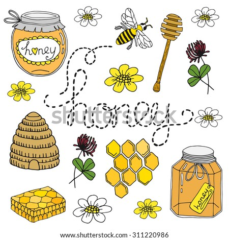 Honey set. Hand drawn collection