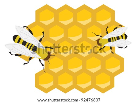 Honeycomb and bees. Vector illustration