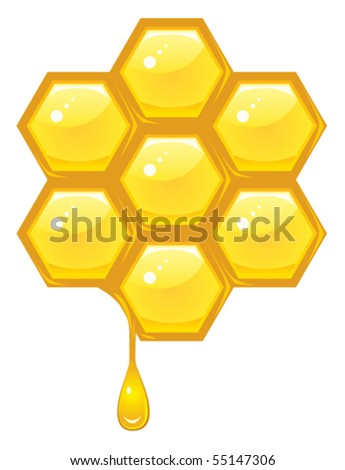 Honeycomb vector - stock vector