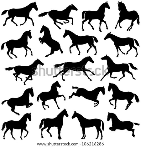 Horse collection - vector silhouette - stock vector