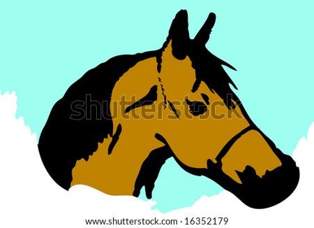 Horse head design - stock vector