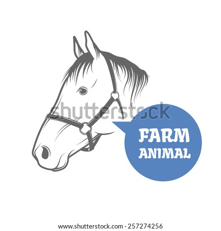Horse head isolated on white background. Vector illustration - stock vector