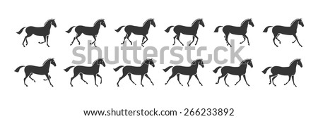 Horse in motion gallop black - stock vector