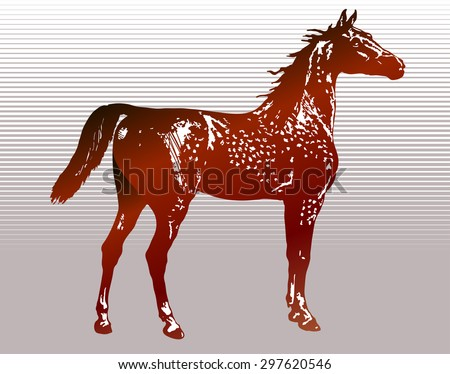 Horse in old style illustration - stock vector