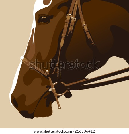 horse portrait vector - stock vector