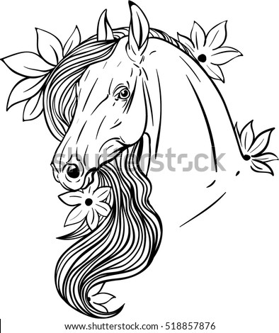 Horse portrait with flower. Coloring page