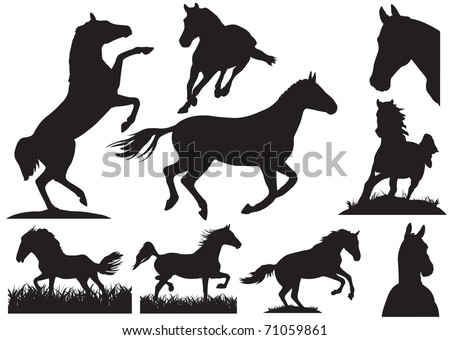 Horse silhouette collection. Vector illustration - stock vector