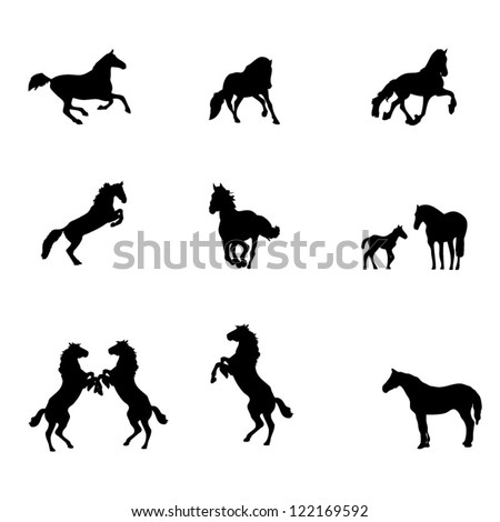 Horse silhouettes isolated on white - stock vector