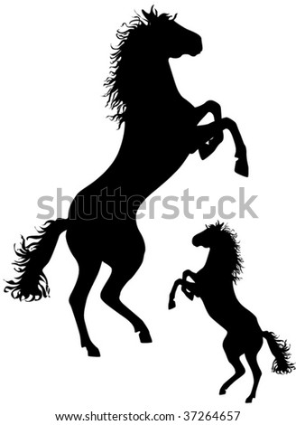 Horse vector silhouettes, design ellements for decoration - stock vector