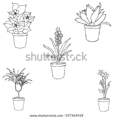 house plants drawing. houseplants sketch by hand pencil drawing vector image the house plants l