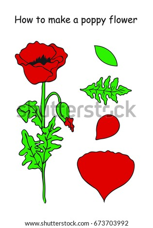 How make poppy flower outline scheme stock vector hd royalty free how to make a poppy flower outline scheme red and green colors vector mightylinksfo
