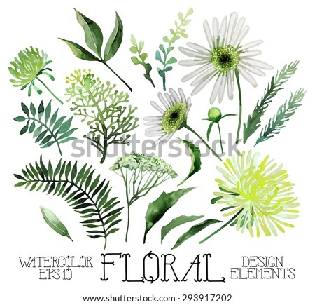 Huge watercolor green floral collection isolated on white background - stock vector