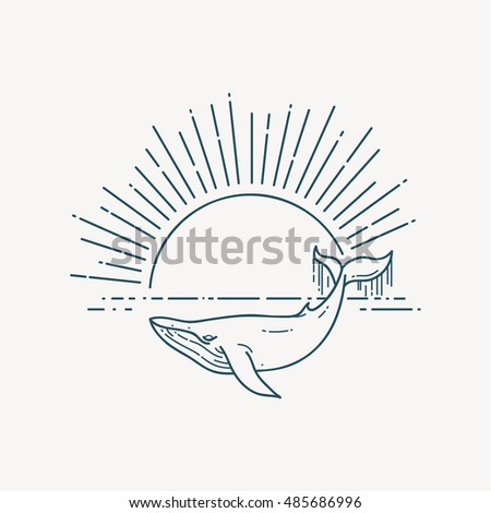 Huge Whale and sea sunrise. Nature exploration poster. Modern flat linear vector illustration. Sealife postcard with retro sunburst