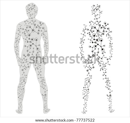 Human body in scientific presentation - stock vector