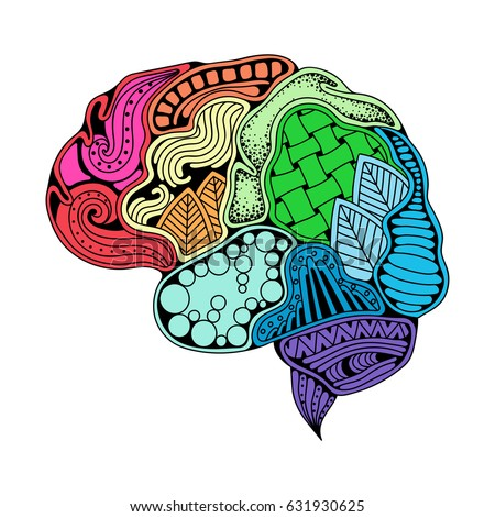 Human Brain Doodle Decorative Curves Creative Mind Learning And Design Idea Concept Background
