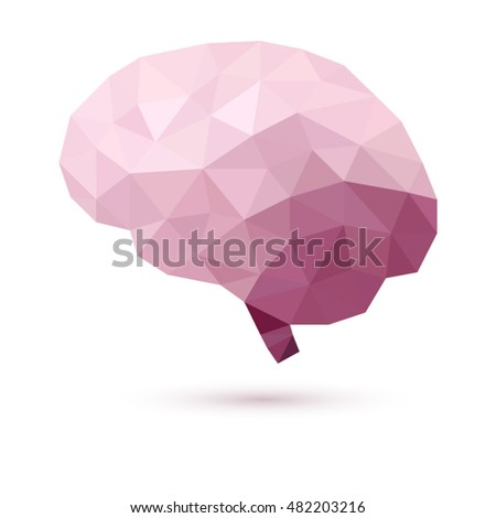 Human brain. Vector illustration